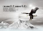秋霞电影高清无码中文