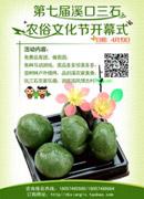 清明农俗文化节