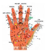 手掌穴位图