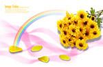 鲜花与花瓣彩虹