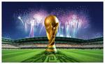 2014世界杯球场