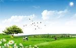 农场庄园PSD