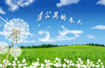 首页中文字幕中文字幕