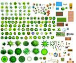 绿化小树集合