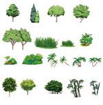 卡通小绿树