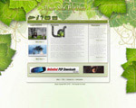 绿色网页模板