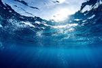 美丽的海底景色