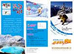 激情滑雪宣传单