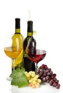 葡萄酒和葡萄