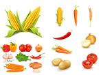 农产品蔬菜矢量