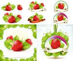 叶子草莓矢量