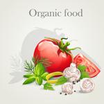 新鲜营养蔬菜