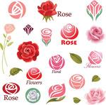精美花朵商标