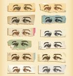 男子眼睛素描
