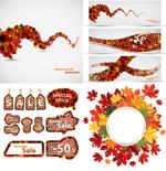 秋季枫叶设计