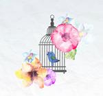 水彩花卉和鸟笼