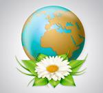 雏菊花与地球