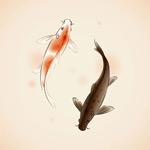 水彩锦鲤矢量