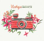 水彩花卉和照相机