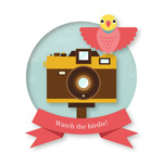 照相机和小鸟