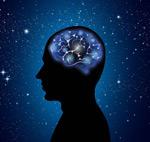 男子大脑矢量