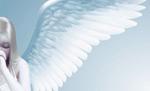 美丽天使矢量