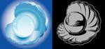蚌和珍珠矢量
