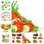 新鲜的蔬菜矢量