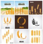 精美麦穗图案