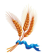 麦穗和彩带矢量