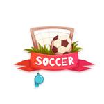 球门里的足球