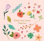 彩色花朵和叶子