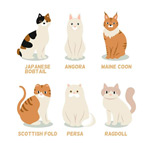 可爱猫咪矢量