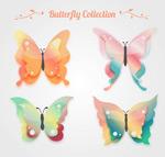 彩色花纹蝴蝶