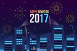 2017新年夜景