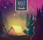 夜晚露营风景