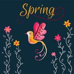 春季花鸟矢量