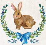 水彩绘可爱兔子