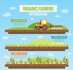 绿色农场信息图