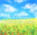 蓝天下的花丛