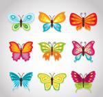 卡通彩色蝴蝶