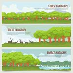 森林树木风景