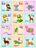 儿童英文识字卡3