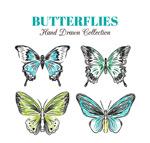 手绘蝴蝶设计