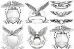 线条老鹰徽章