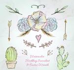 婚礼植物和装饰