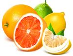 新鲜水果矢量