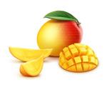 新鲜芒果设计