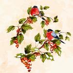 手绘小鸟与果实