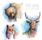 彩绘动物头像